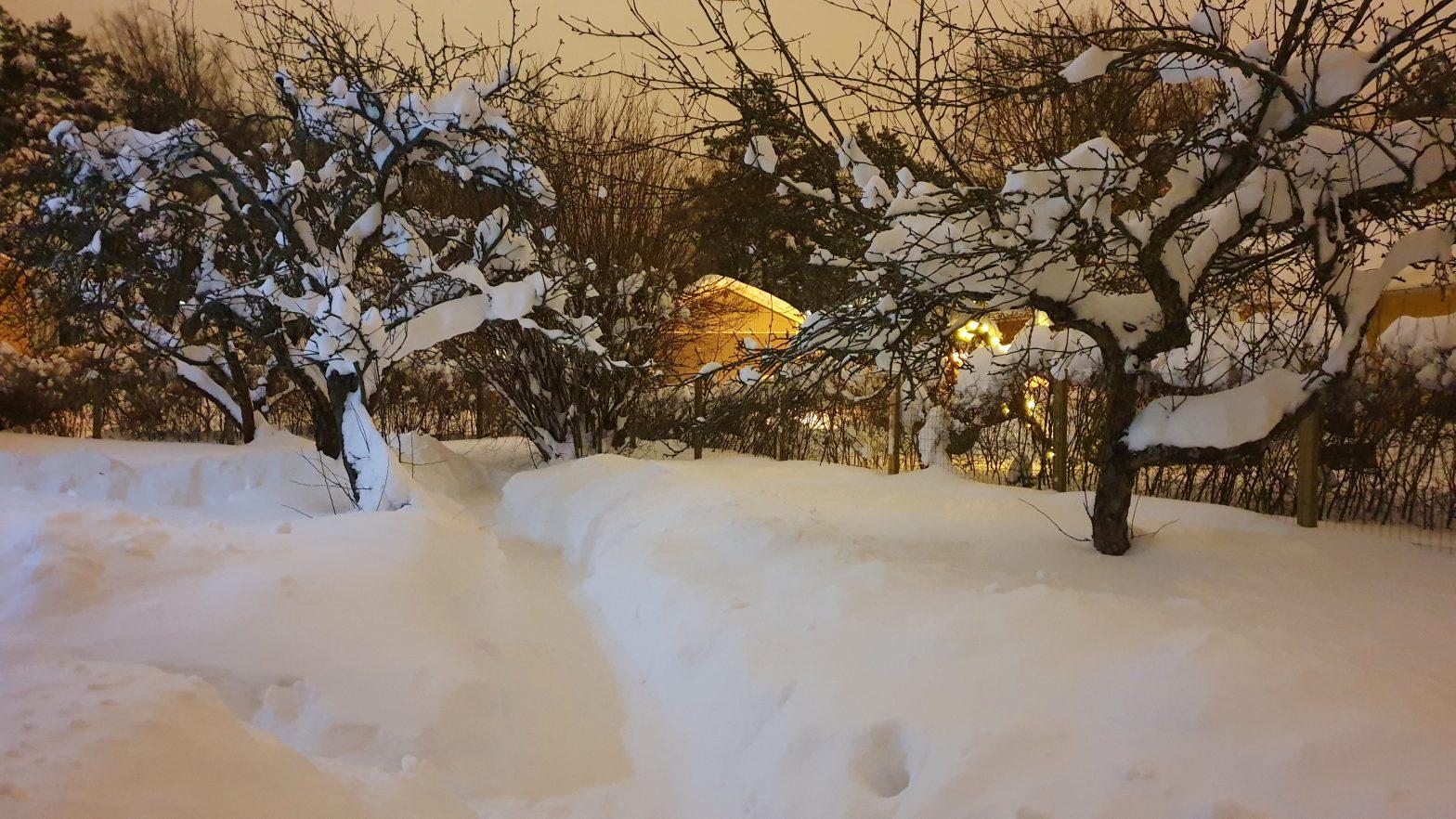 Luminen maisema omakotitalon pihalta